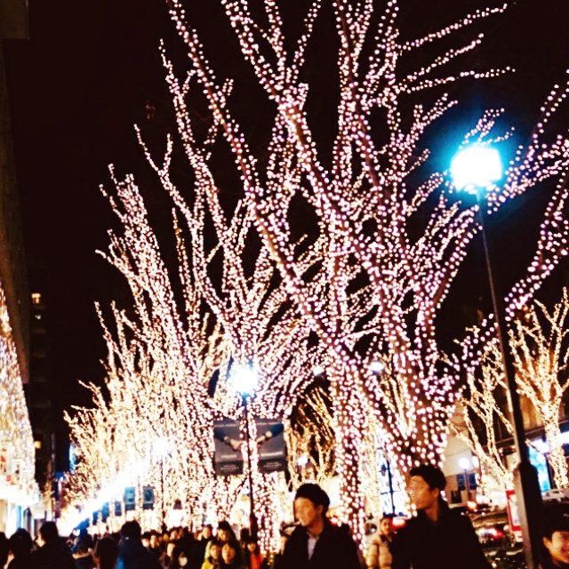 東京・表参道で愉しむ煌めくイルミネーション